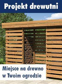 Projekt drewutni